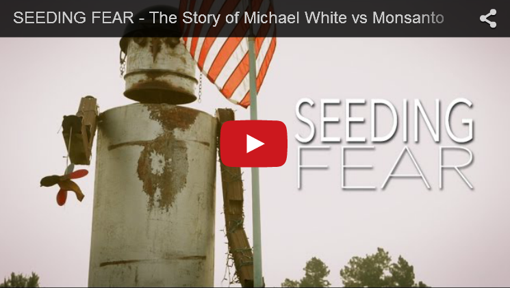 Watch this 10 minute film called #SeedingFear - Michael vs Monsanto. It's a must see. #nongmo #JustLabelit