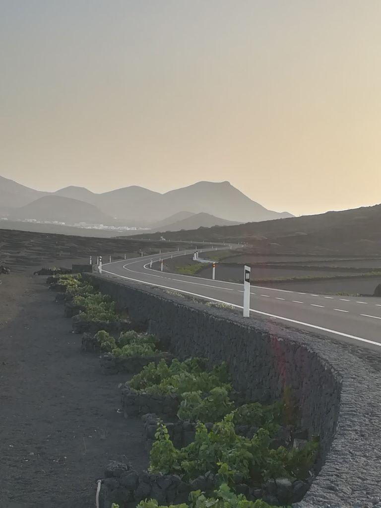 Senderismo En La Geria Descubre Lanzarote Senderismo Isla De Lanzarote Rutas De Senderismo