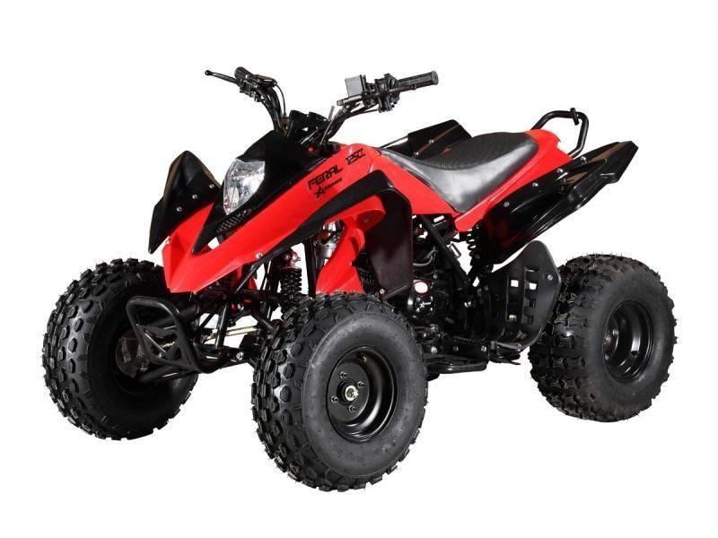 Atomik 125cc Feral Quad Bike - Red | ATV/Quad Bikes | Quad
