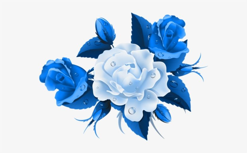 Blue Rose Png Vector In 2020 Rose Flower Png Flower Wreath Illustration Blue Flower Png