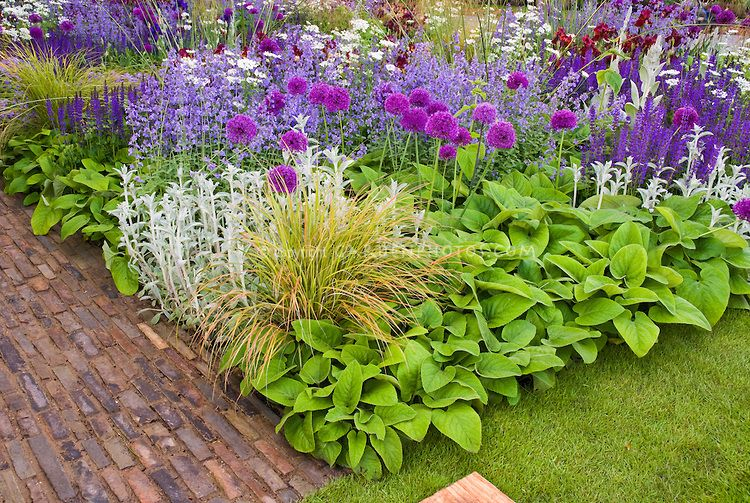 Photo of Beautiful flower bed border garden with mixed bulbs, ornamental grass, foliage plants, flowers, in mostly blue and lavender and purple color themed tones | Plant & Flower Stock Photography: GardenPhotos.com