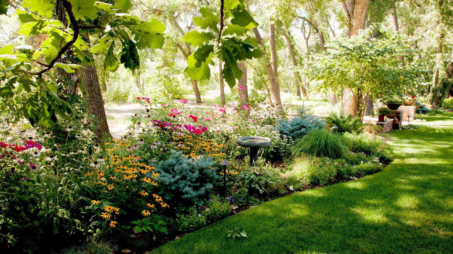 Greenscapes Detailed Landscape Landscape Landscape Design Plans Landscape Design