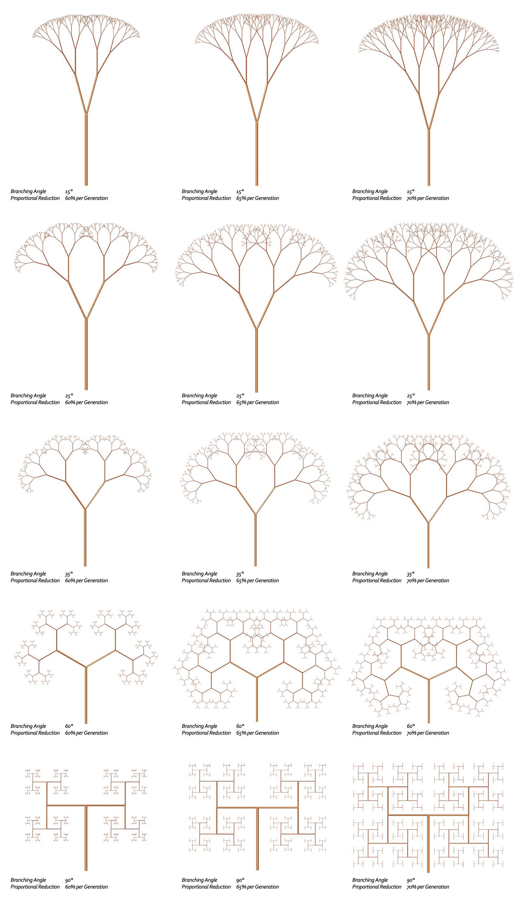 Fractal Trees Basic L System Example 9 4 Fractal Tree
