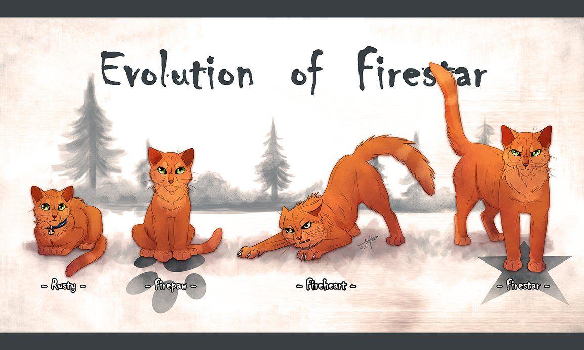 Evolution Of Firestar By Ambcatbone On Deviantart Warrior Cats Books