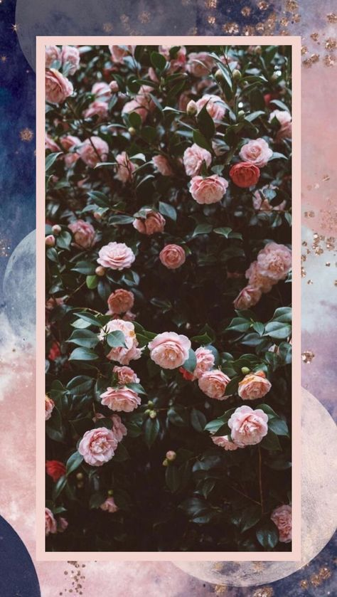 Best Flowers Tumblr Background Iphone Wallpaper Posts 26 Ideas In