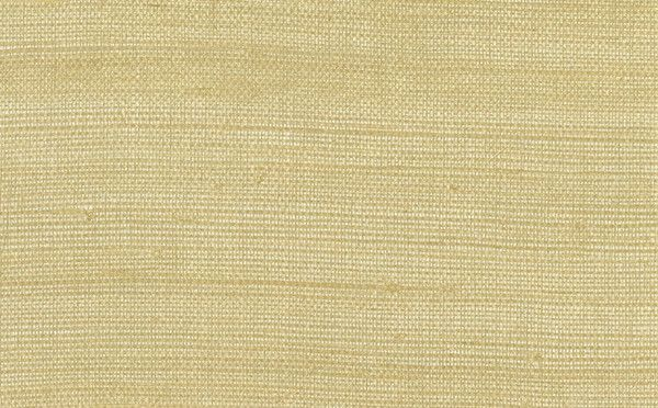 Grasscloth Sisal Regular Weave Wallpaper in Neutrals and Metallic design by Seabrook Wallcoverings