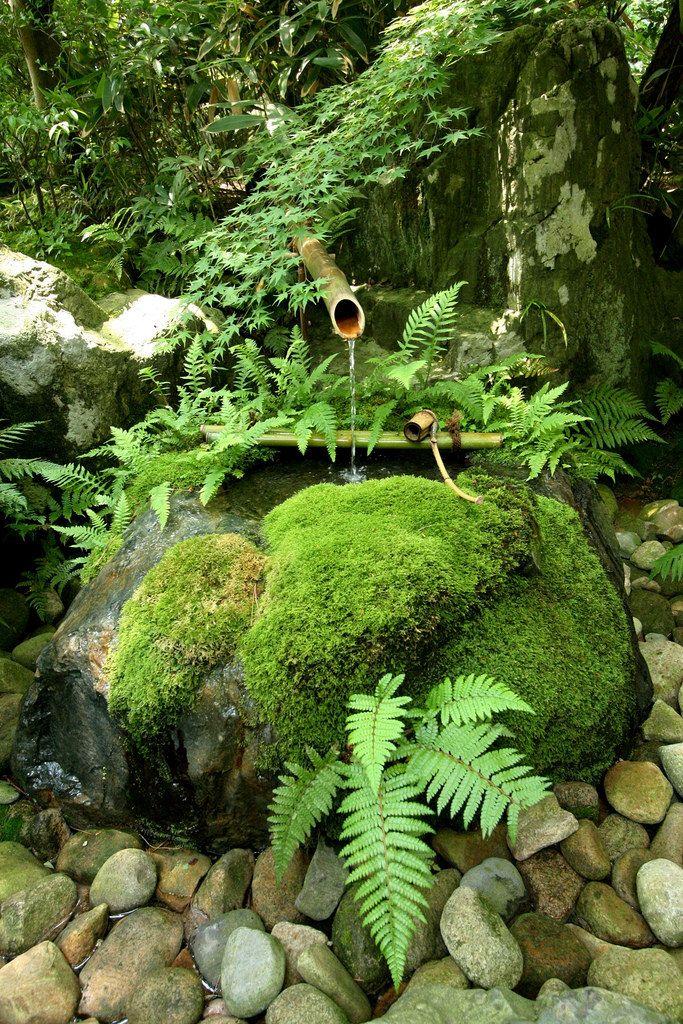 Japanese Garden, Japanese Tea Garden Water Basin
