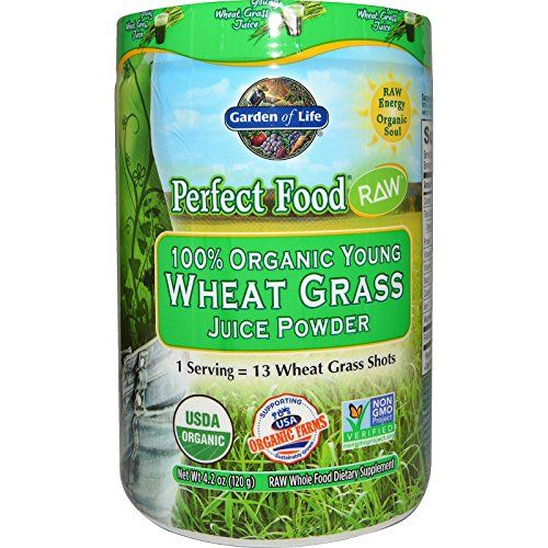 Best Garden of Life Perfect Food RAW 100 Organic Young Wheat Grass ...