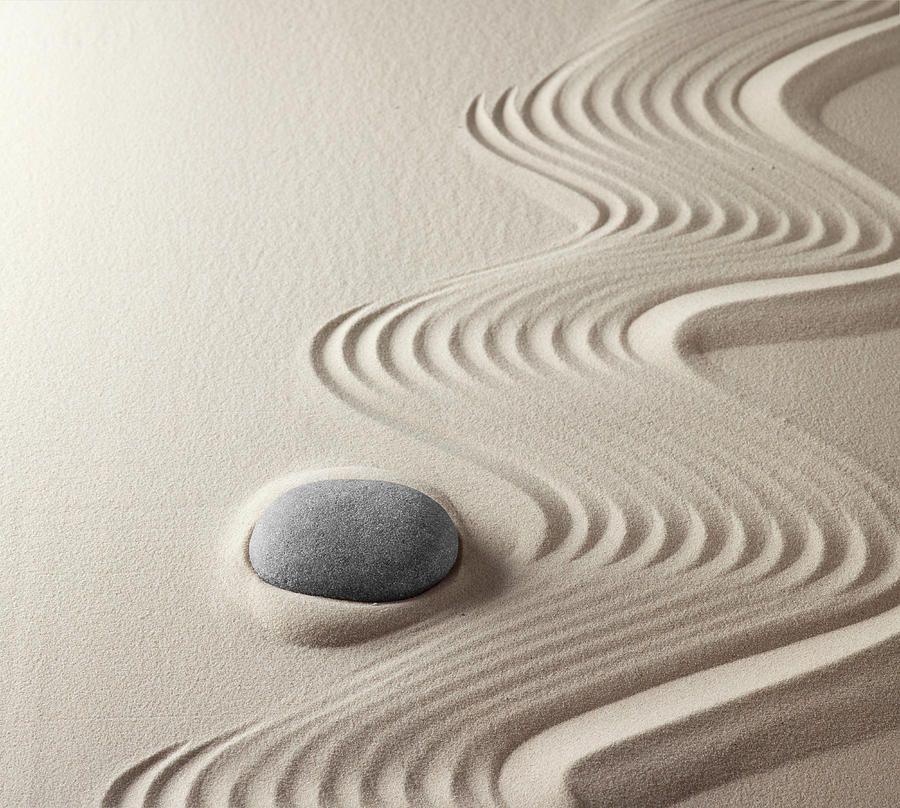 Create Your Own Zen Garden | Pura Vida Bracelets