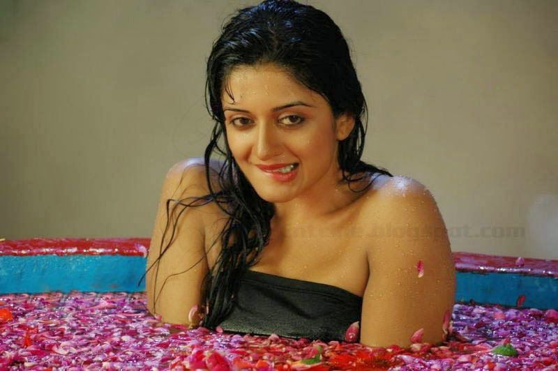 Image result for Vimala Raman hd images