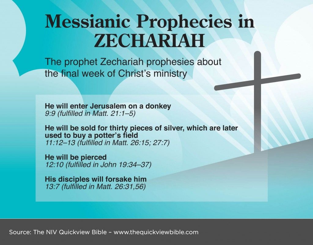 Some messianic prophecies in zechariah read more about the the quick view bible four of the many many prophecies made about jesus hundreds of years before he lived buycottarizona