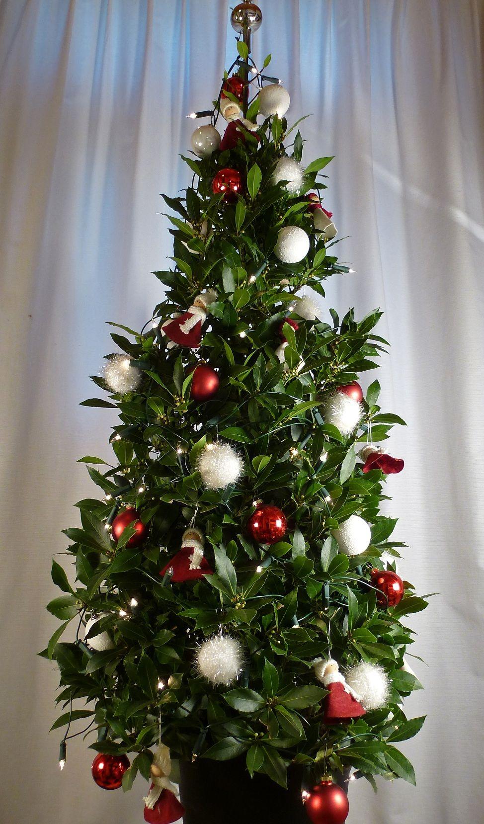 Rood En Wit Decoreren Potplanten Kerst
