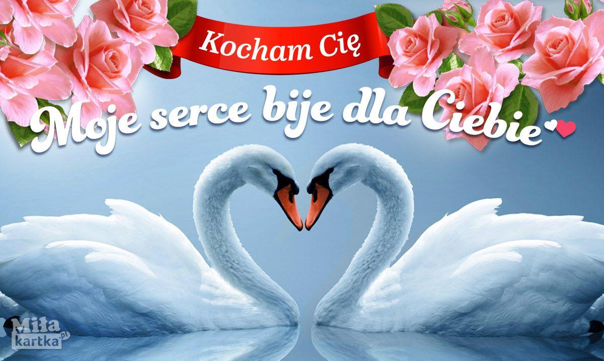 Moje Serce Dla Ciebie Milosc Kochanie Kartki Walentynki Serce Okolicznosciowe Polska Poland Pocztowki Dlaciebie Love Kwiaty Labedzie Swans Va Swan