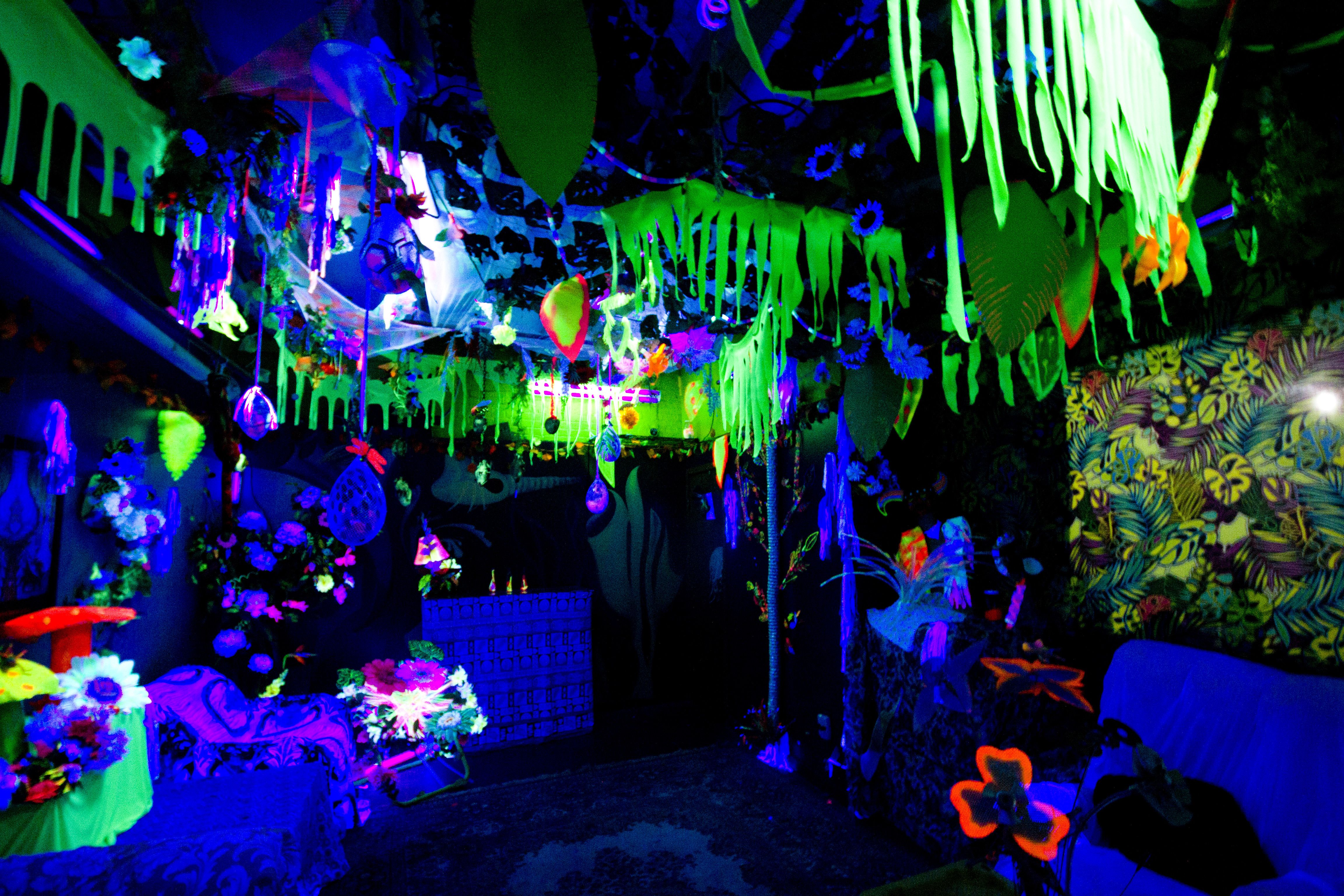 black lights in bedroom use a black light for a glowing the jungle 14590