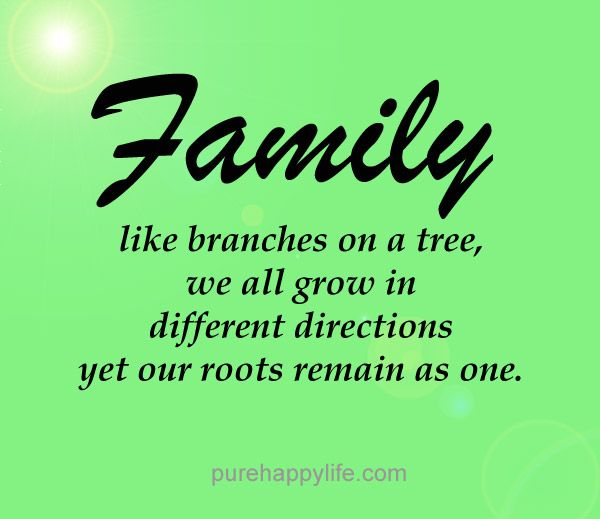 About Family Relationship Quotes: #quotes More On Purehappylife.com