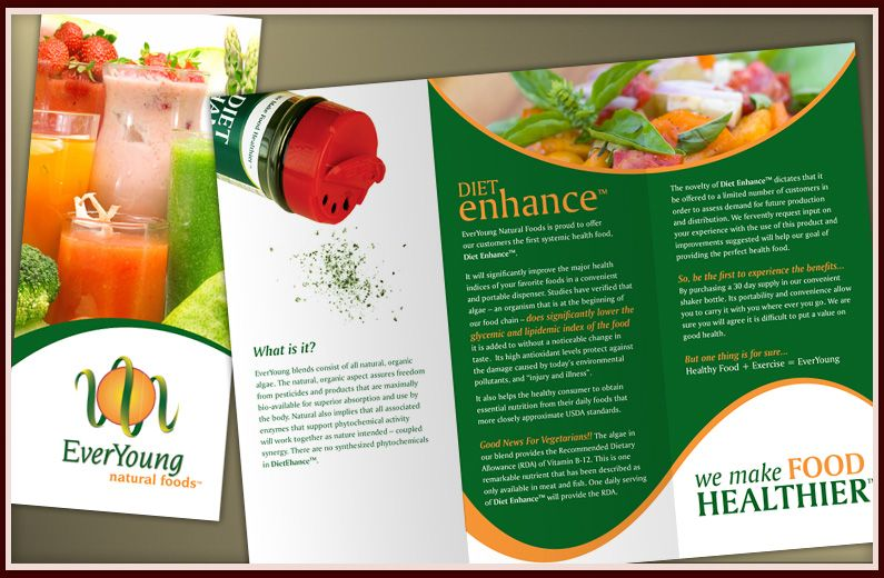 Professional Brochures Examples – Brochure Design Idea Example