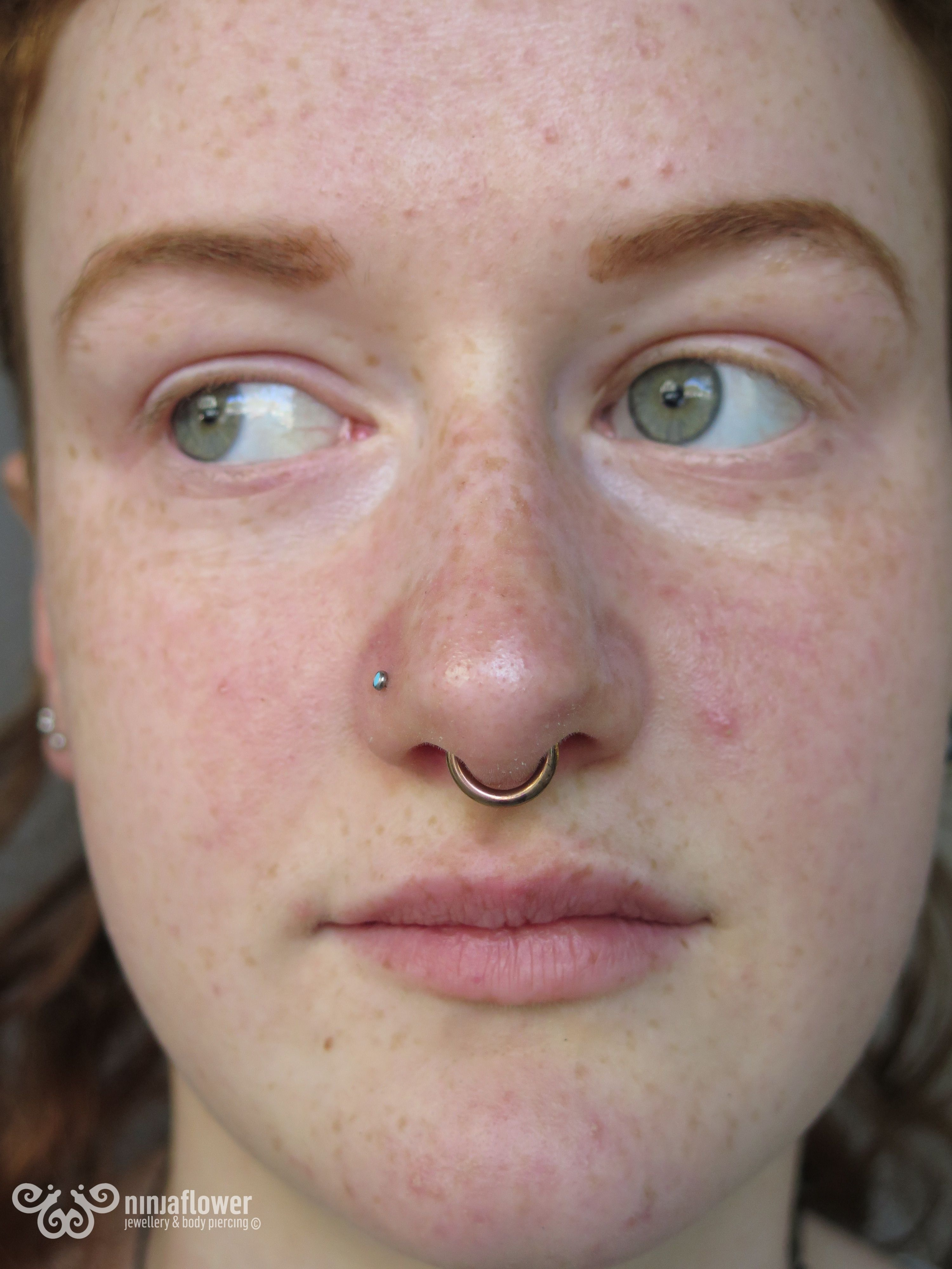 Healed 12g Septum Featuring Anodised Rose Gold Ring Septum