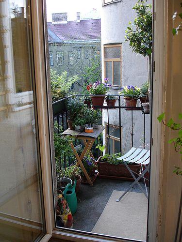 Piccolo angolo verde in un piccolo balcone.