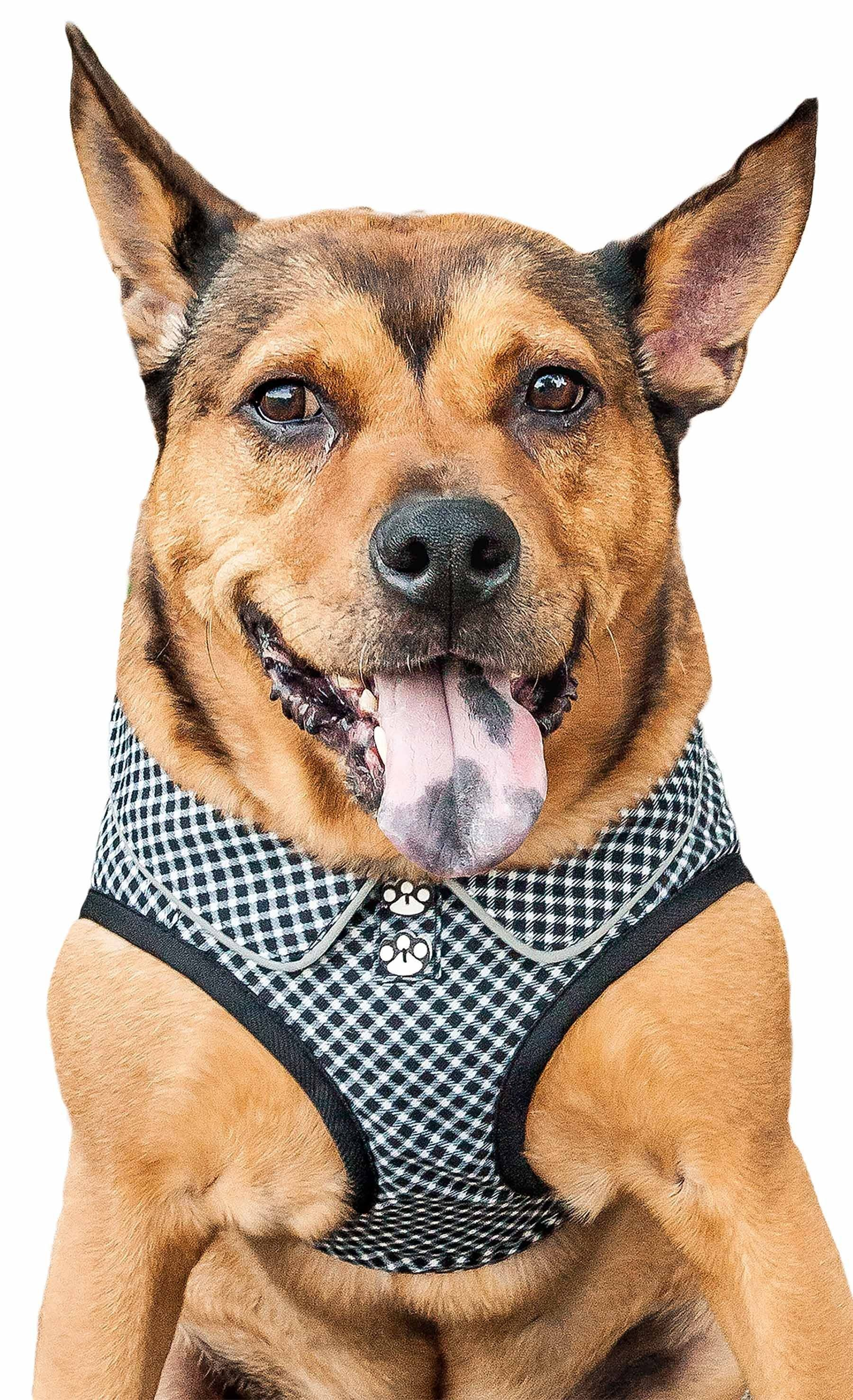 Pet Life Checkerwag Checkered Buttoned Mesh Reversible And