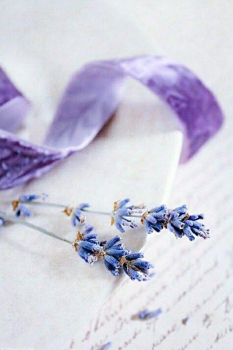 4 Single Paper Napkins for Decoupage Lavender Greetings Letter