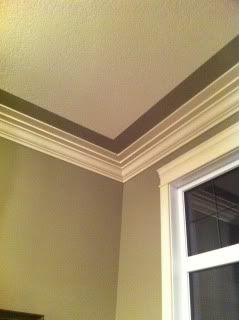 painted ceiling border - paint the tray ceiling contrasting colors.