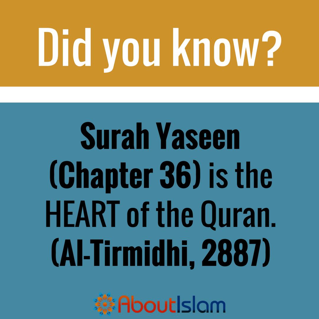 Surah Yaseen is the ❤️ of the Quran  | ISLAM❤(May Allah