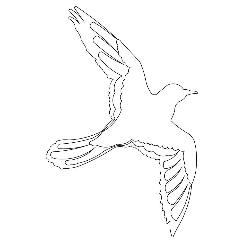 Flying Bird Jpg 1000 1000 Bird Drawings Birds Flying Bird Illustration