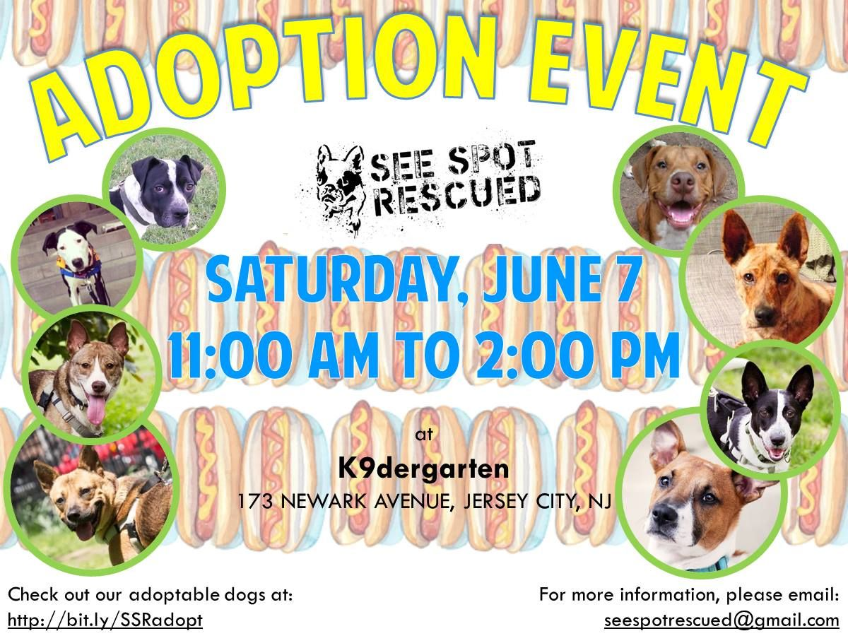 seespotrescued jerseycity saturday june adopt rescue