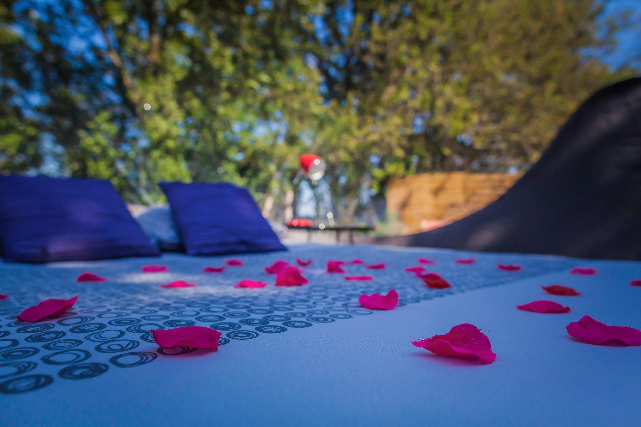 Des Petales De Roses Pour Une Touche Romantique Bienvenue Dans Votre Bulle Maisonsbulles Bulle Insolite Maison Bulle Nuit Insolite Hebergement Insolite