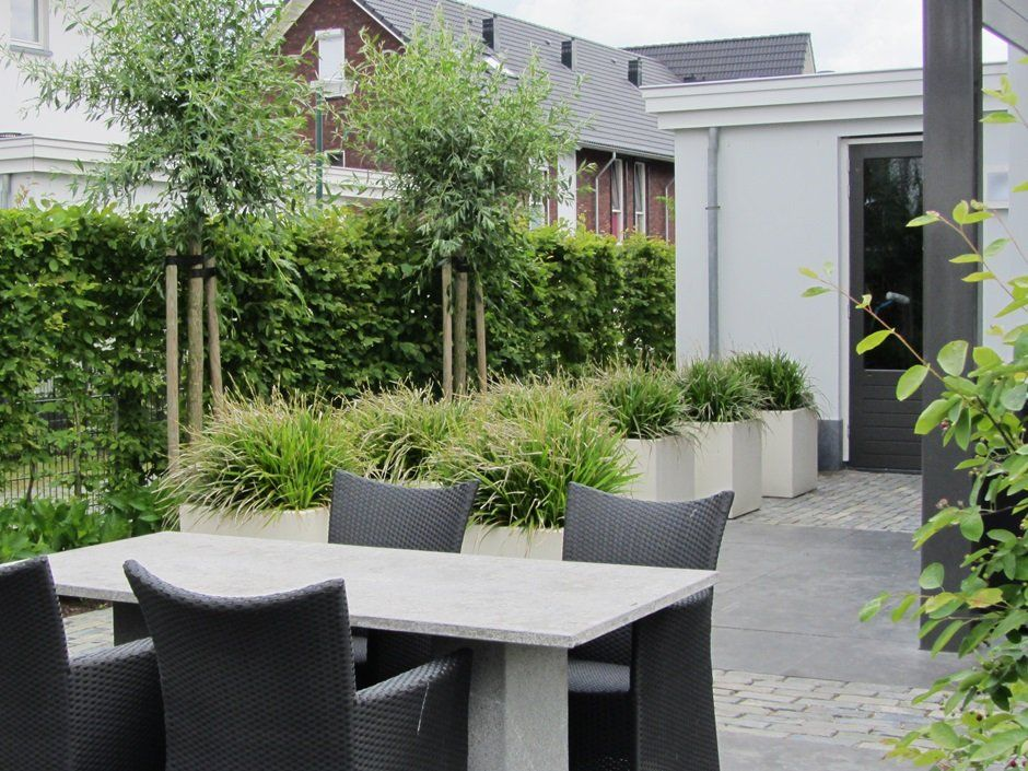 Strakke polyester bakken wit exclusieve materialen scoria for Strakke kleine tuin