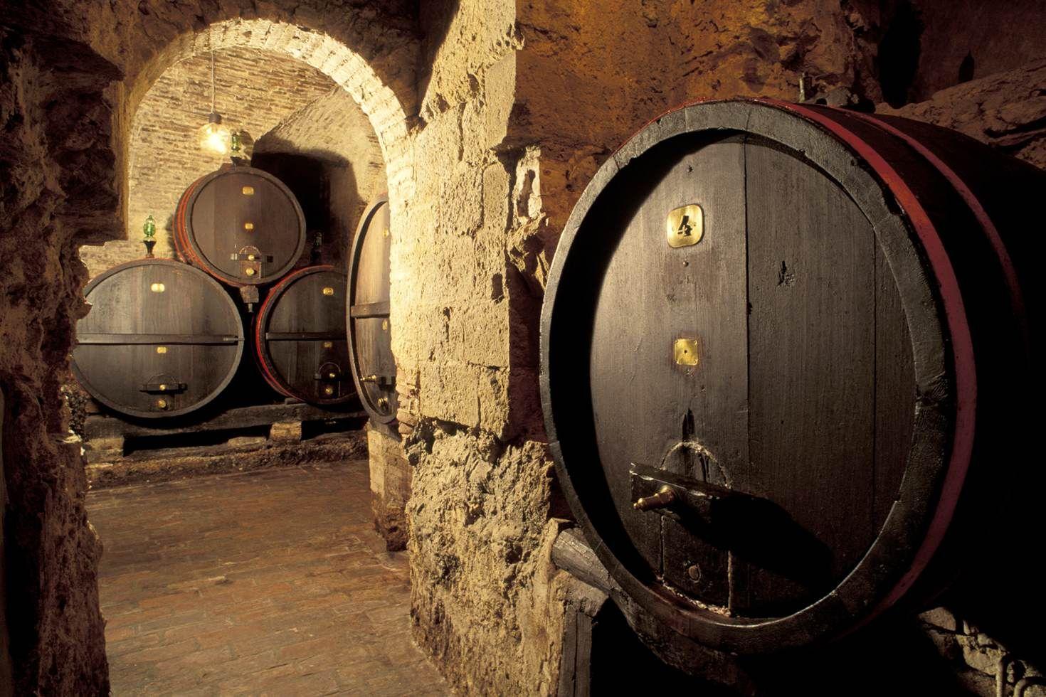 An atmospheric wine cellar in Montepulciano