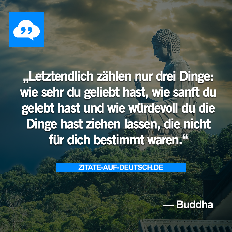 Leben Liebe Spruch Spruche Wurde Zitat Zitate Buddha
