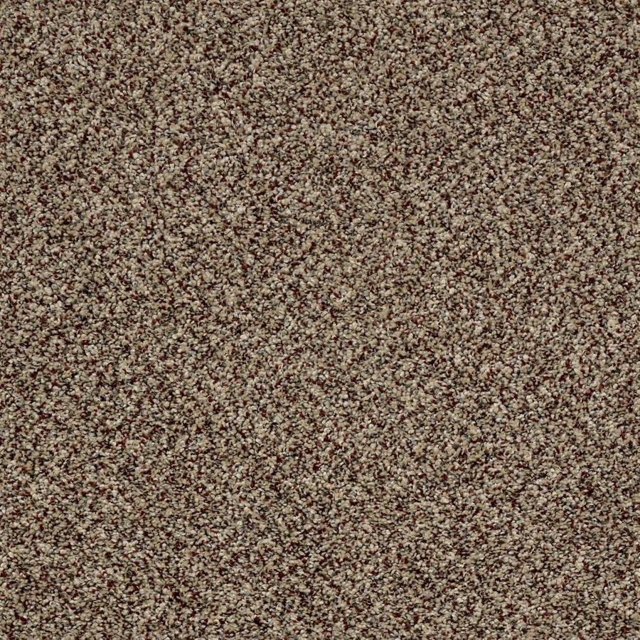 Shaw Wide Width Statuette Iii 15ft Worn Path 15 Ft Textured Worn Path Interior Carpet Lowes Com Carpet Samples Textured Carpet Home Decorators Collection