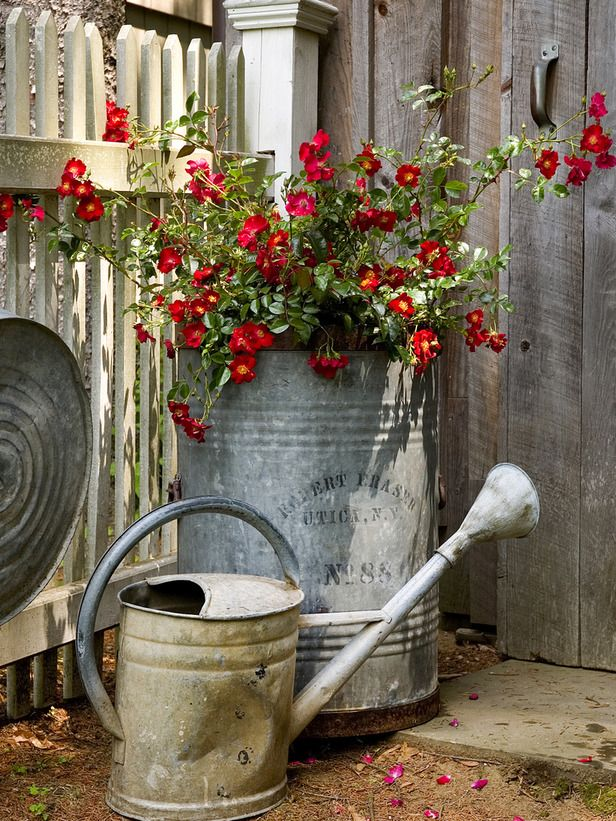 Container Gardening Ideas Pictures Videos Garden Containers Container Gardening Vintage Garden