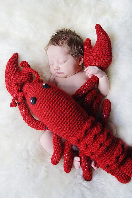 Lucy The Lobster Pattern By Wendy Smalley Pinterest Aunt