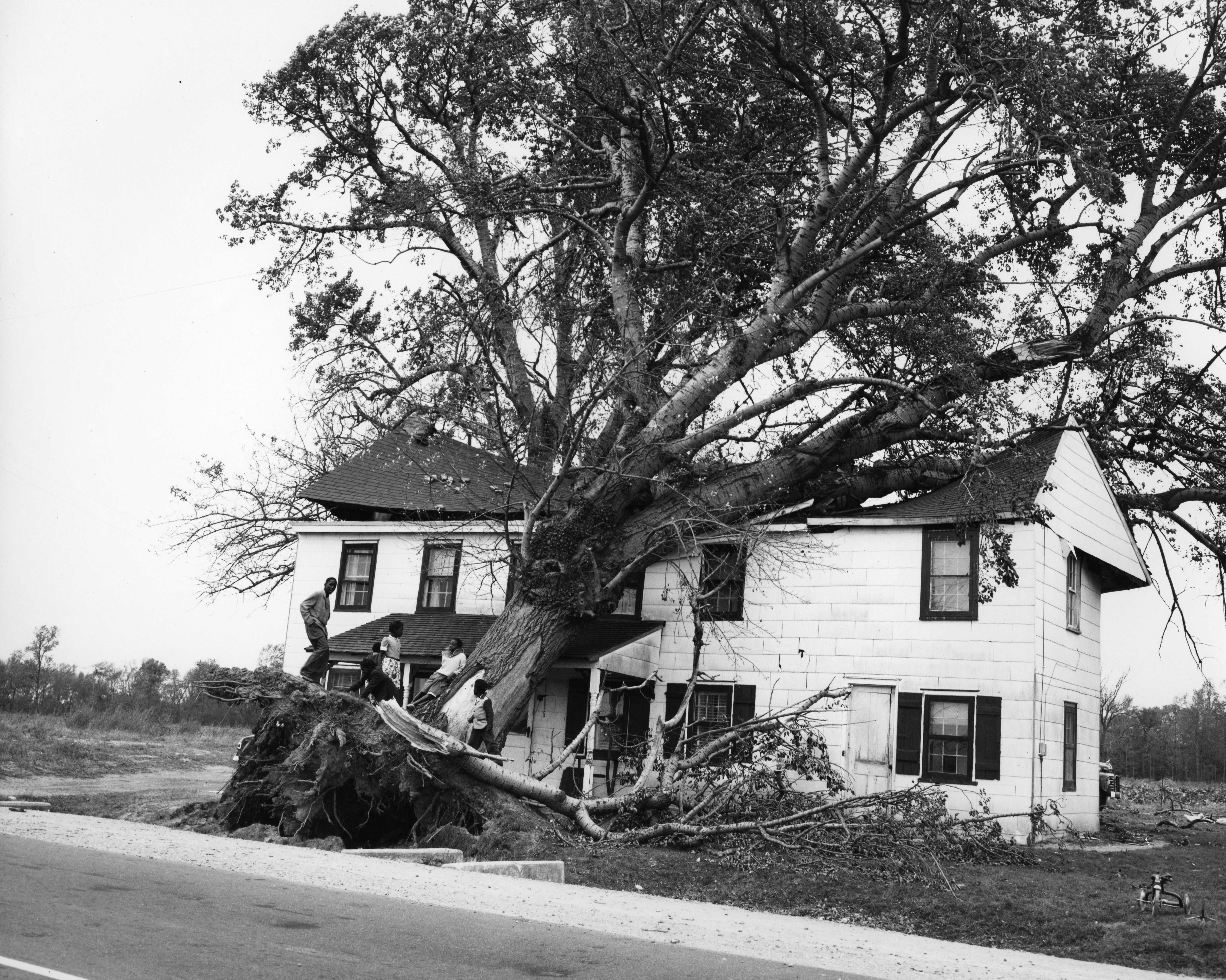 Hurricane Hazel October 1954 House Damaged By Winds In Hartly Delaware 1540 000 000 2821 Delaware Public Ar Hurricane Hazel Atlantic Hurricane Hartly