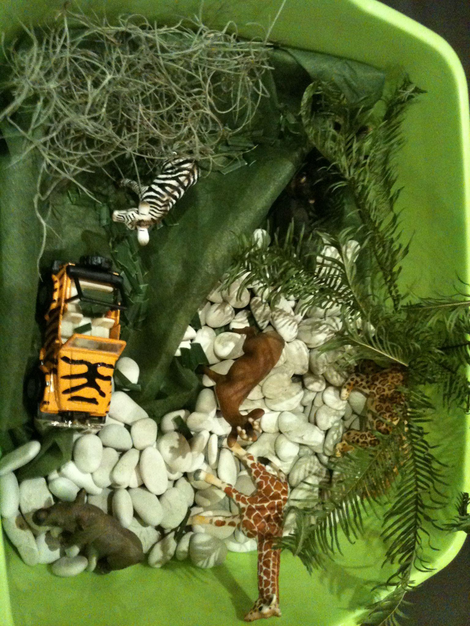 Classroom Rainforest Ideas ~ Jungle sensory bin bins pinterest
