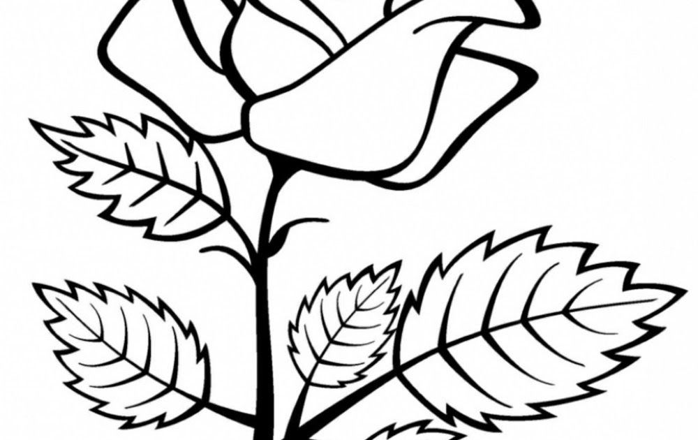 27 Contoh Gambar Bunga Cantik Kumpulan Contoh Soal 2 Mewarnai Flora Mawar 3 Cara Menggambar Sketsa Bunga Yang Simple Dan Mud Di 2021 Bunga Gambar Bunga Bunga Cantik