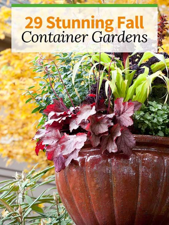 29 Stunning Fall Container Gardens