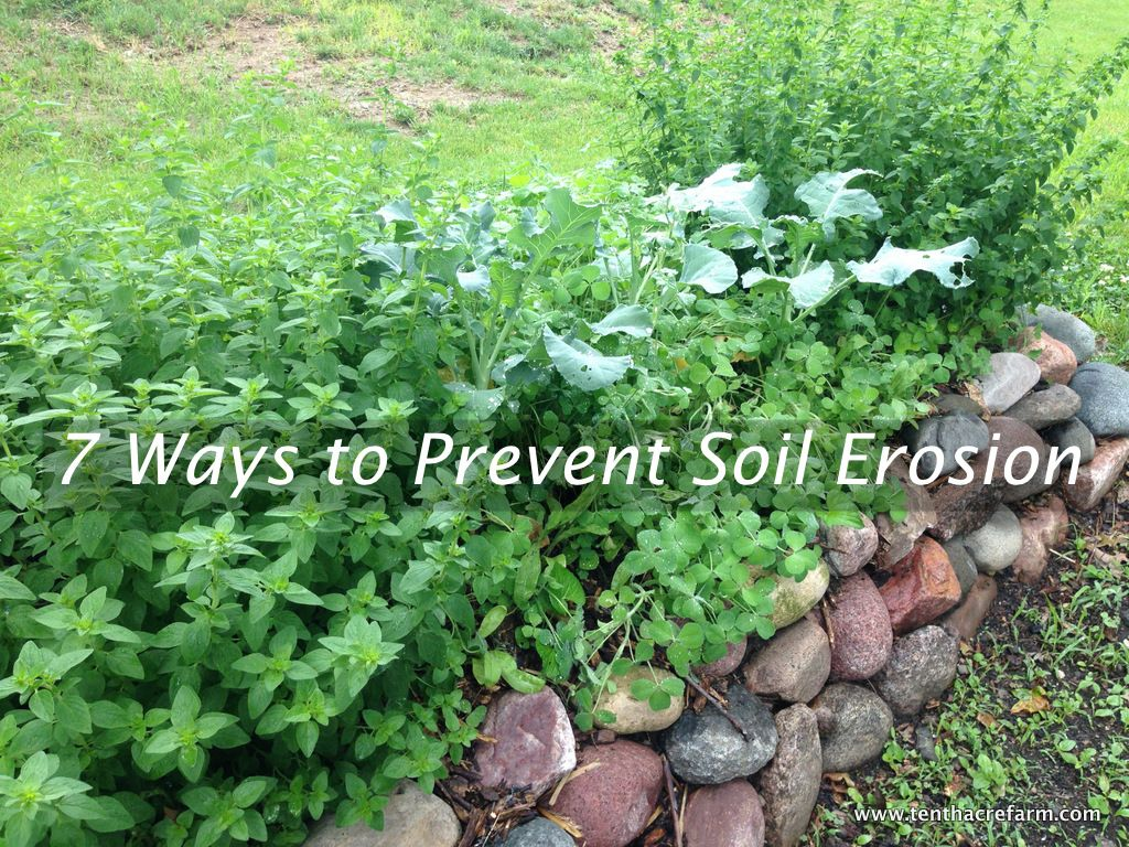 One of the biggest mistakes in backyard gardens is leaving for Soil erosion prevention