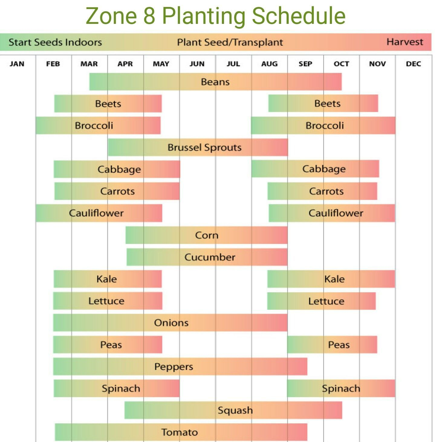 Planting Guide For Zone 8a Using Zip 75125 (Ferris