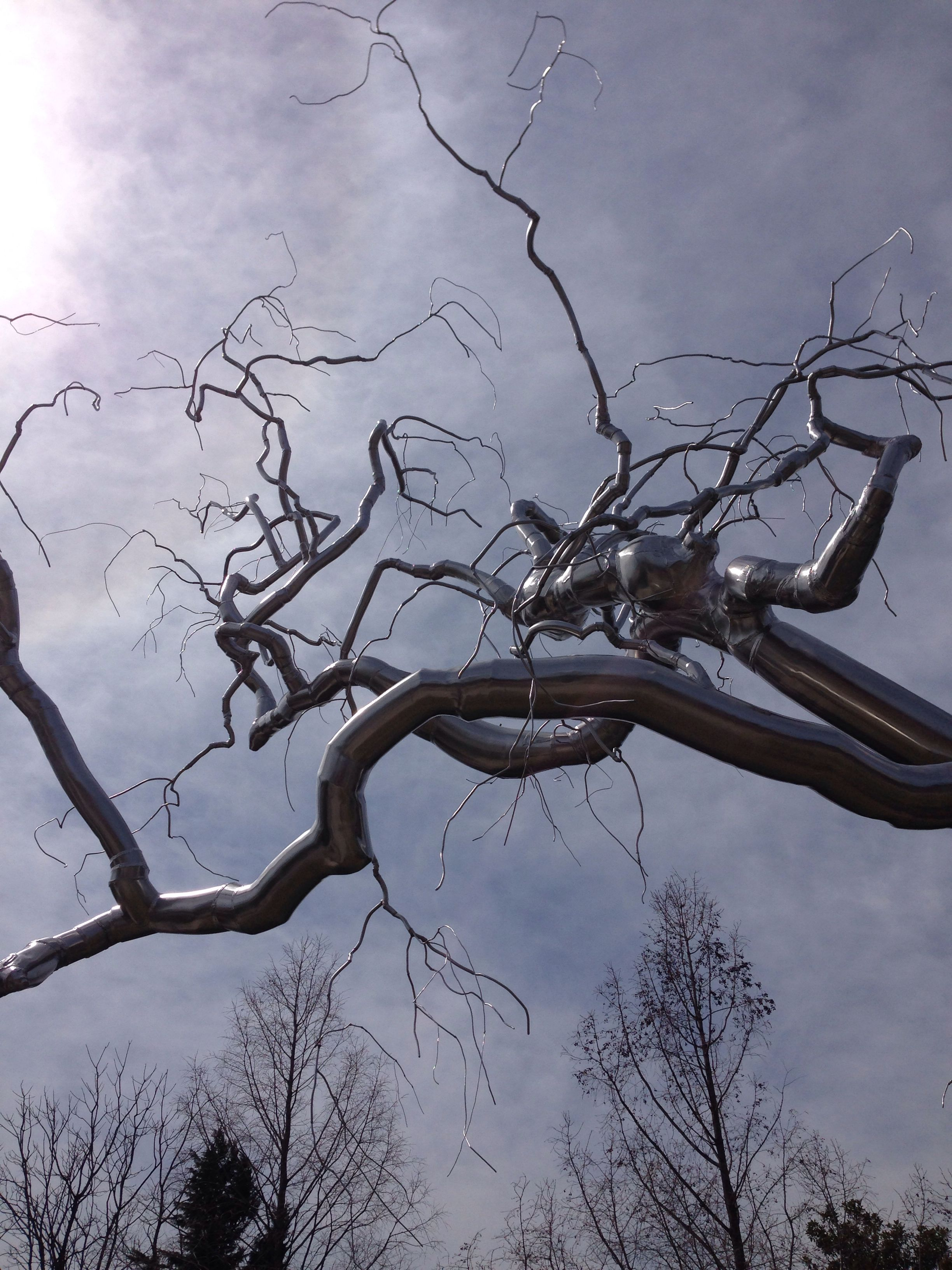 Stainless steel tree by Roxy Paine for the Sculpture Garden of the National Gallery of Art.