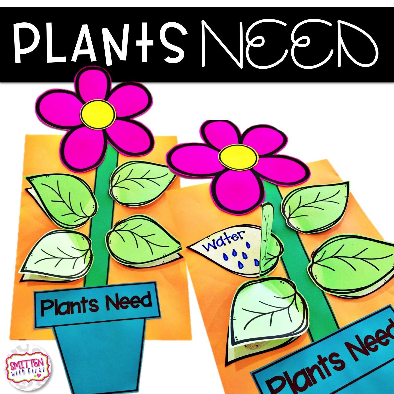 Plants Plant Activities Parts Of A Plant Plant Life