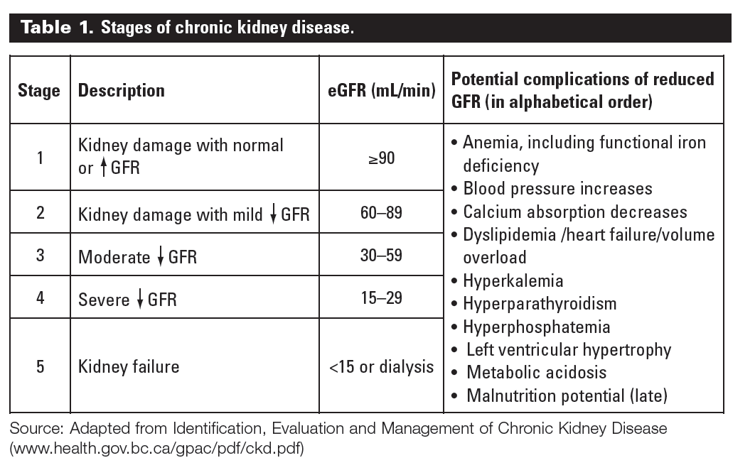 The 5 Stages Of Ckd Explained In Depth Also Includes Info On Causes Symptoms Diagnosis And Treatments Kidney Failure Diet Kidney Disease Stages Kidney