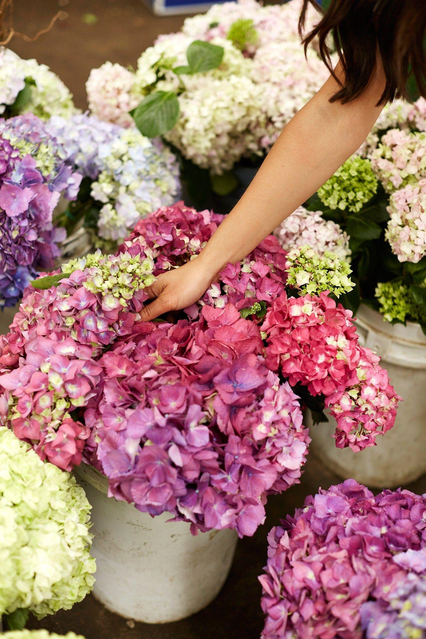 Downtown LA Flower Market Flower market, New york flower
