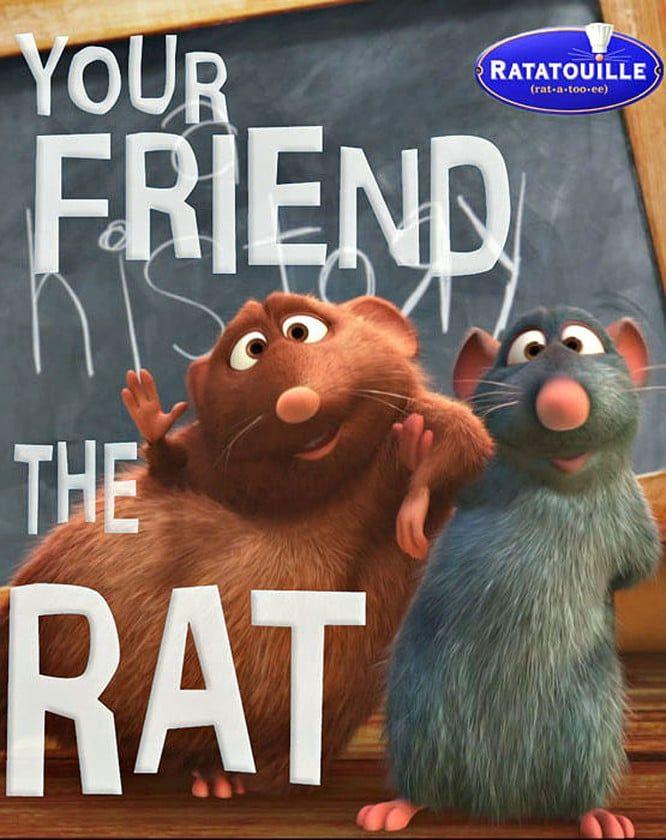 Dvd Ratatouille 19 900 Ratatouille Disney Pelicula Ratatouille Tiendas Disney