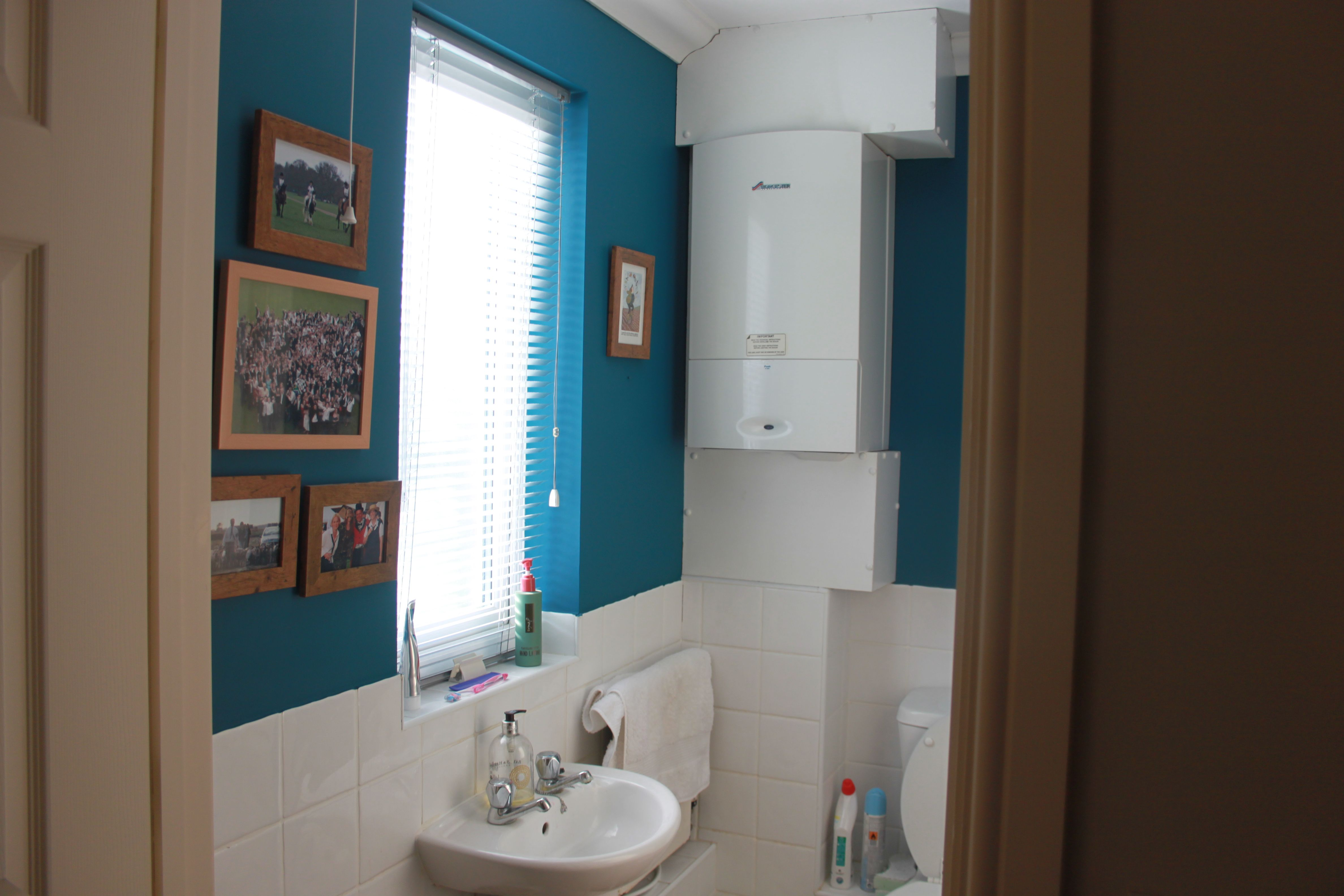 The Loo; Painted Dulux Teal Tension
