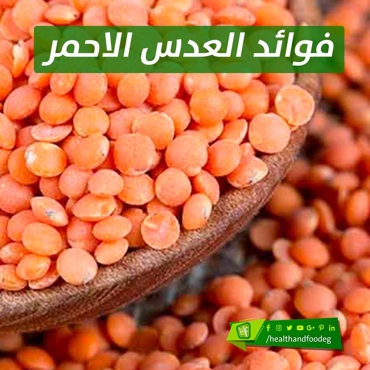 فوائد العدس الاحمر أكثر من 20 طريقة علاجية Vegetables Food Beans