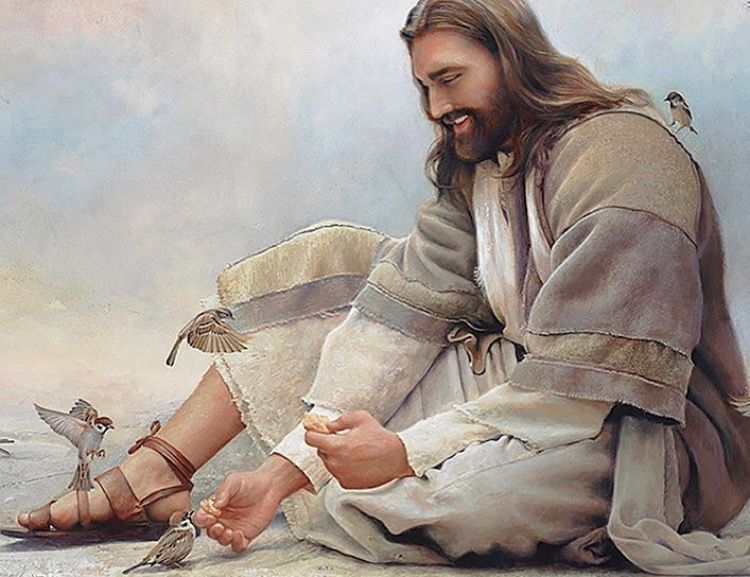 Precious painting of Jesus feeding the birds. Prophetic Art ...