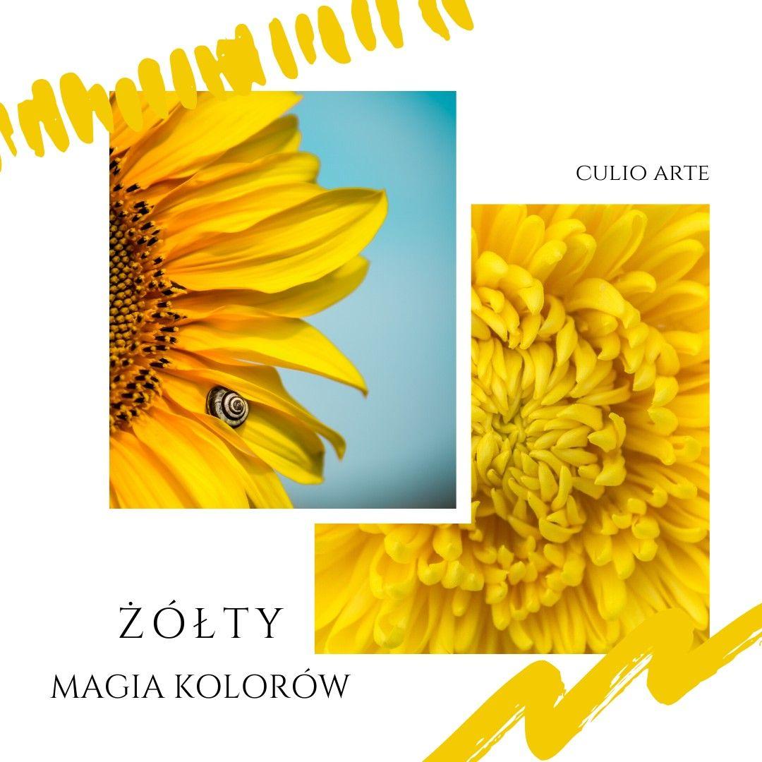 Pin By Soul Art By Martyna Jakubowska On Alternatywnie Czyli Naturalna Medycyna Fruit Pineapple